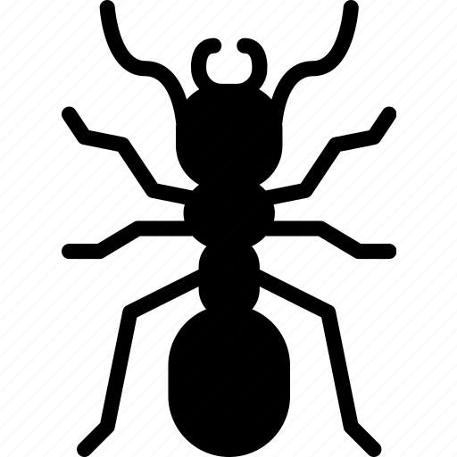 ant, bug, fire, insect, nature icon