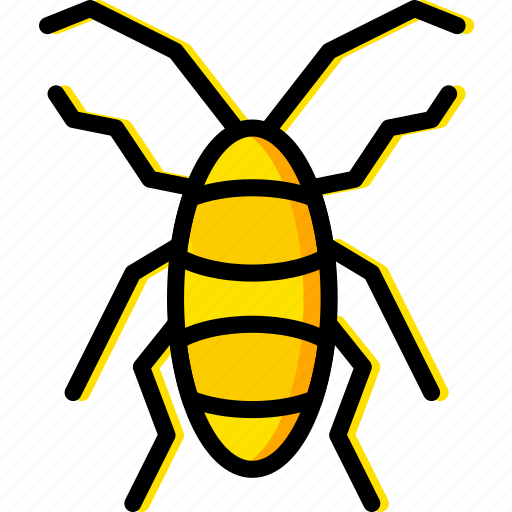 bug, cockroach, insect, nature icon