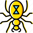bug, insect, nature, widow icon
