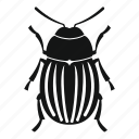 beetle, bug, insect, invertebrate, nature, pest, wildlife icon