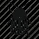 beetle, bug, insect, invertebrate, nature, pest, wildlife
