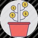 assets, dollar plant, finance, investment, money