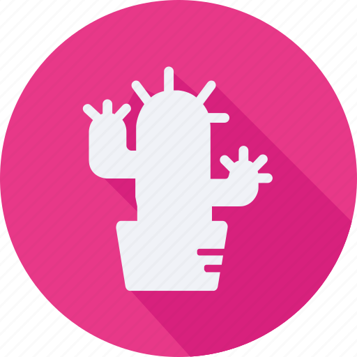 business, cactus, finance, financial, profit, statistics icon