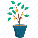 growing, growth, money, mutual funds, plant icon