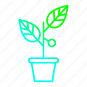 business, growth, investments, plant