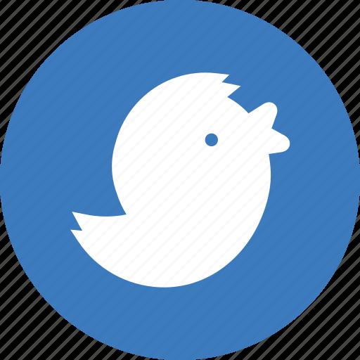 bird, business, finance, trade icon