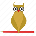 owl teacher, smart classes, teacher icon