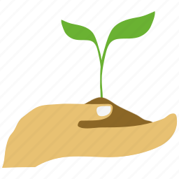 ecology, green, hand, money plant, plant icon