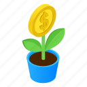 plant, color, money, dollar, tree, growth, green