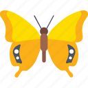 butterfly species, cartoon butterfly, cute butterfly, insect, swallowtail butterfly icon