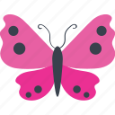 argus, beautiful, butterfly, flutter, fly, garden, larvae, nature, scotch, specie, spring, tattoo icon