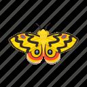 animal, arthropod, beautiful, butterfly, fauna, insect, nature icon