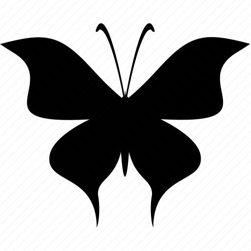 butterfly, flight, wings icon