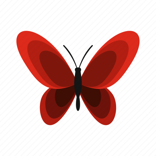 Beautiful, butterfly, decoration, nature, spring, summer, wing icon - Download on Iconfinder