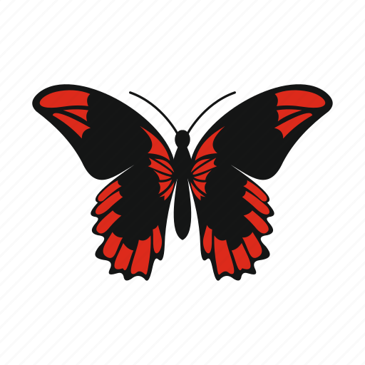 beautiful, butterfly, decoration, nature, spring, summer, wing icon