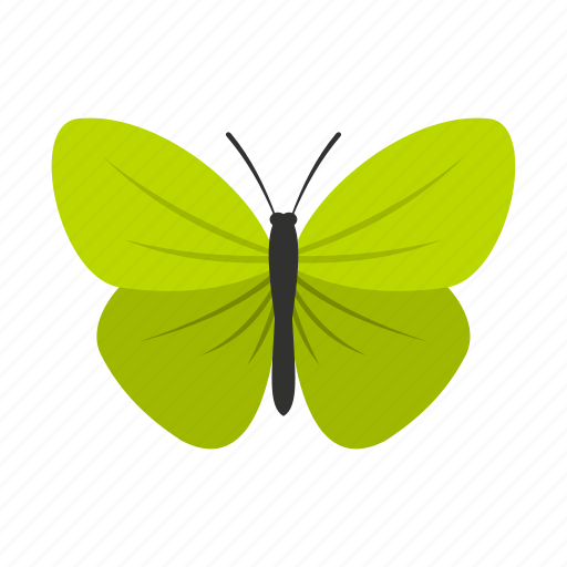 butterfly, decoration, insect, small, spring, summer, wings icon