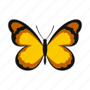 butterfly, decoration, insect, pattern, spring, summer, wings icon