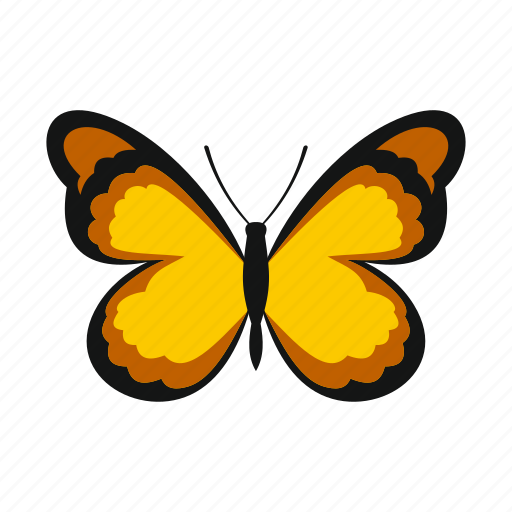 Butterfly, summer, pattern, decoration, insect, spring, wings icon