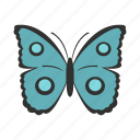 butterfly, circles, decoration, spring, summer, wing, wings icon