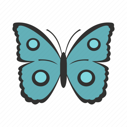 Butterfly, circles, decoration, spring, summer, wing, wings icon - Download on Iconfinder