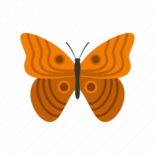 butterfly, decoration, nature, ornament, spring, summer, wing icon