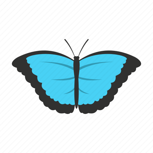 Butterfly, decoration, spring, summer, wing, wings icon - Download on Iconfinder