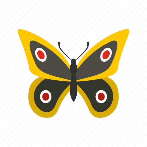 butterfly, decoration, little, nature, spring, summer, wing icon