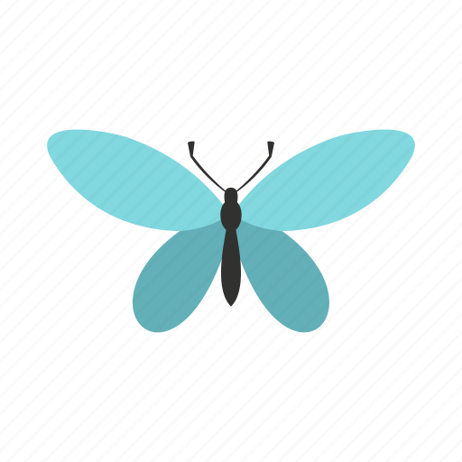 antennae, butterfly, decoration, nature, spring, summer, wing icon