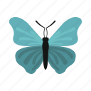 butterfly, colorful, fly, insect, nature, spring, wing icon