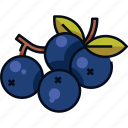 berries, berry, blueberry, fruit, nature, organic icon