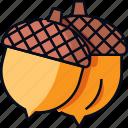 acorn, autumn, chestnut, fall, nut, oak, seed icon