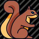 animal, autumn, rodent, squirrel, wild icon