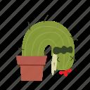 cactus, gag, sick icon