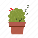 cactus, cute, sleep icon