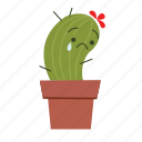 cactus, cute, sad icon