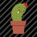 cactus, cute, sad icon