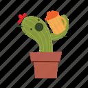 cactus, drink, soda icon