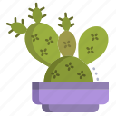 cactus, 1, angel, wings