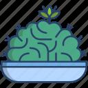 brain, cactus