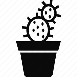 cactus, nature, plant, pot icon