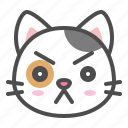 avatar, calico, cat, cute, face, kitten, serious