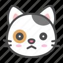 avatar, calico, cat, cute, face, kitten, sad