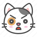 angry, avatar, calico, cat, cute, face, kitten