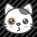 avatar, calico, cat, cute, face, kitten