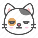 avatar, bored, calico, cat, cute, face, kitten