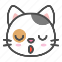 avatar, calico, cat, cute, face, kitten, sleepy icon
