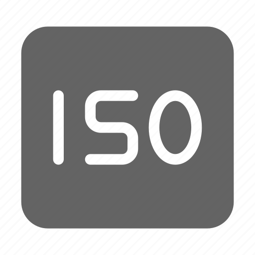 Camera, iso, photography icon - Download on Iconfinder