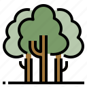 foliage, forest, natural, trees icon