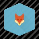 animal, boards, fox, individular