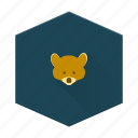 animal, bear, boards, camping, individular, outside icon